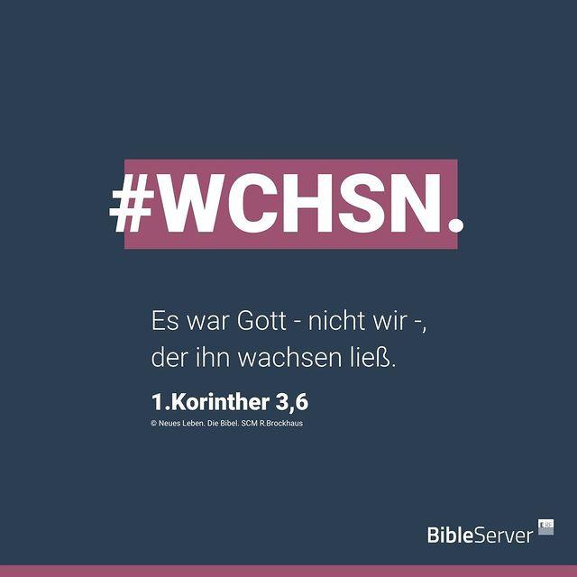 #WCHSN - Es war Gott - nicht wir -, der ihn wachsen ließ. (1. Korinther 3,6)
